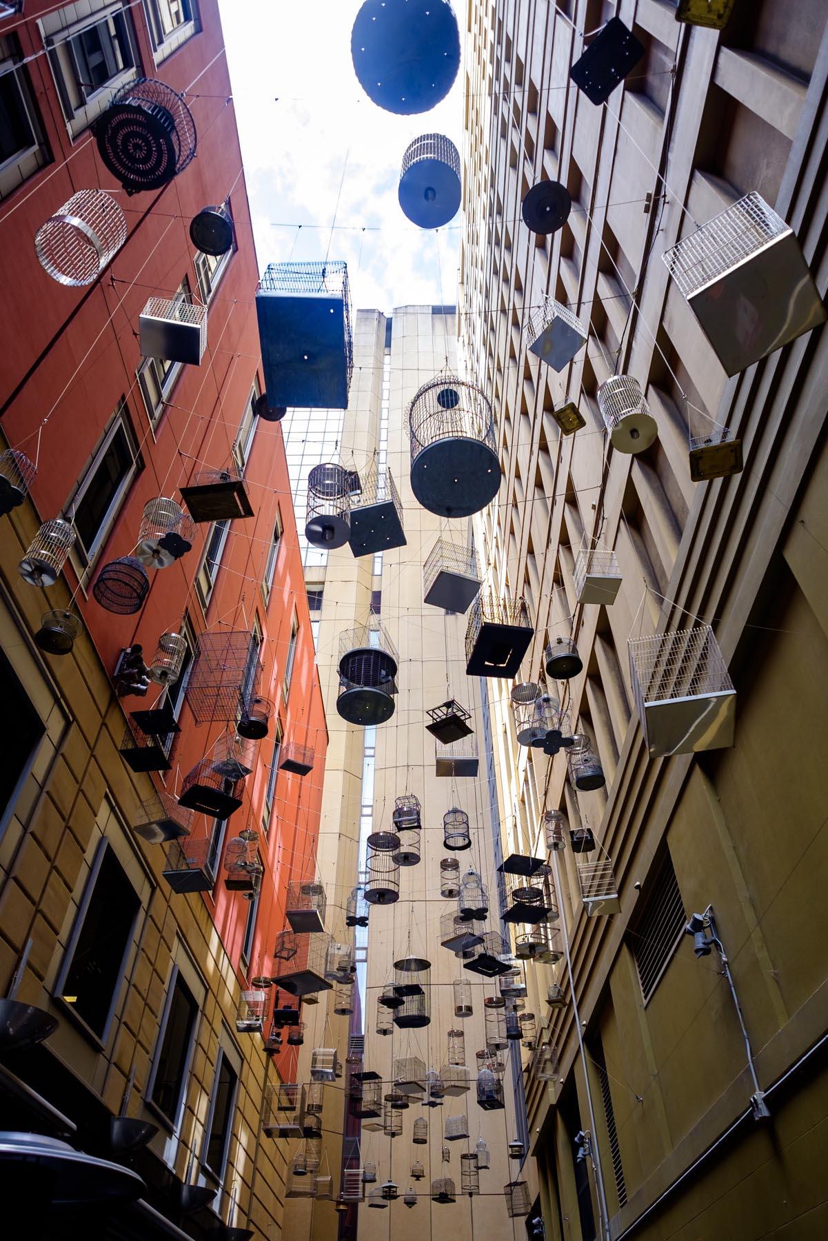 hanging bird cages Sydney Australia