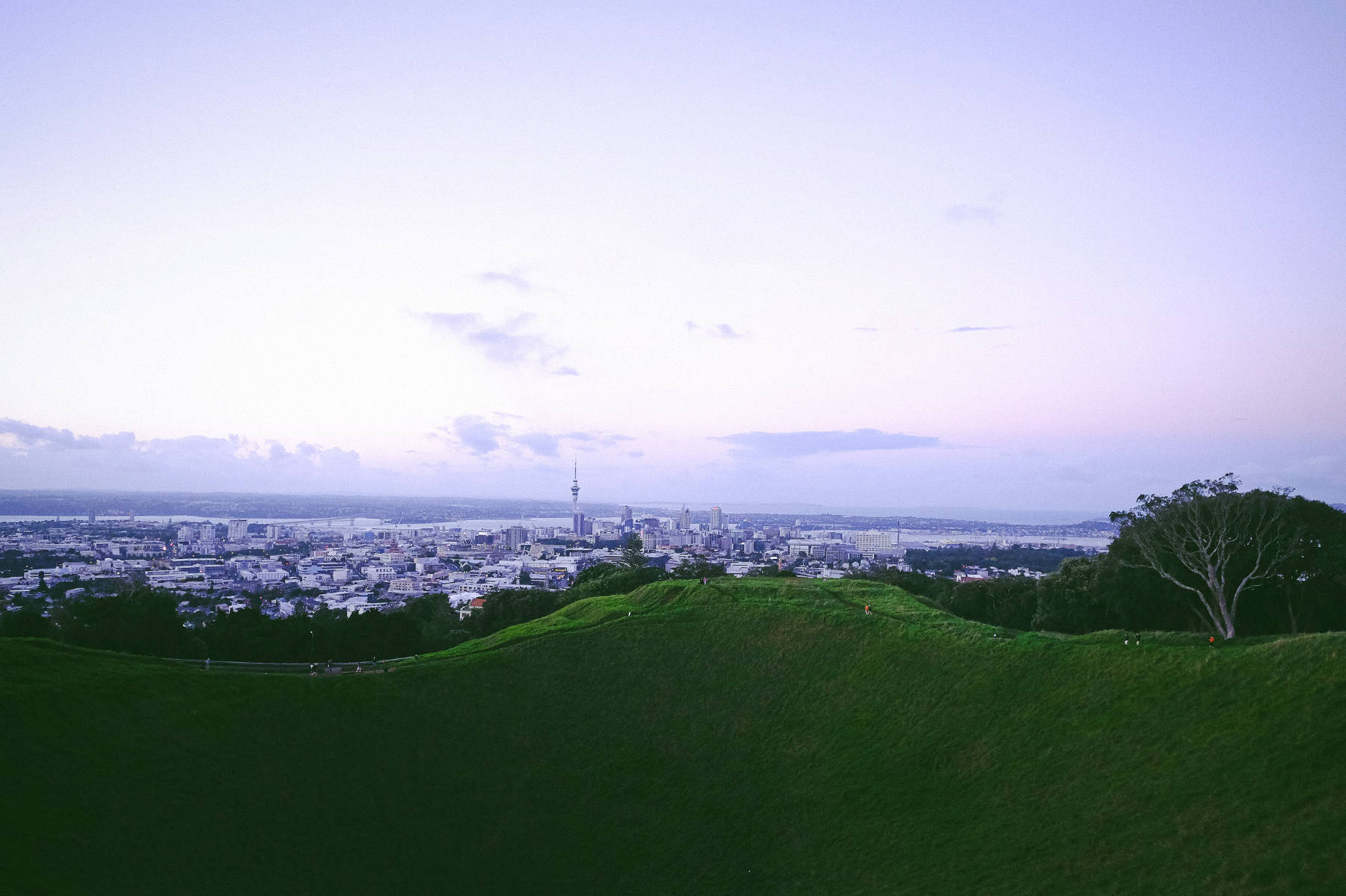 Mount Eden Cityscape view Auckland new zealand