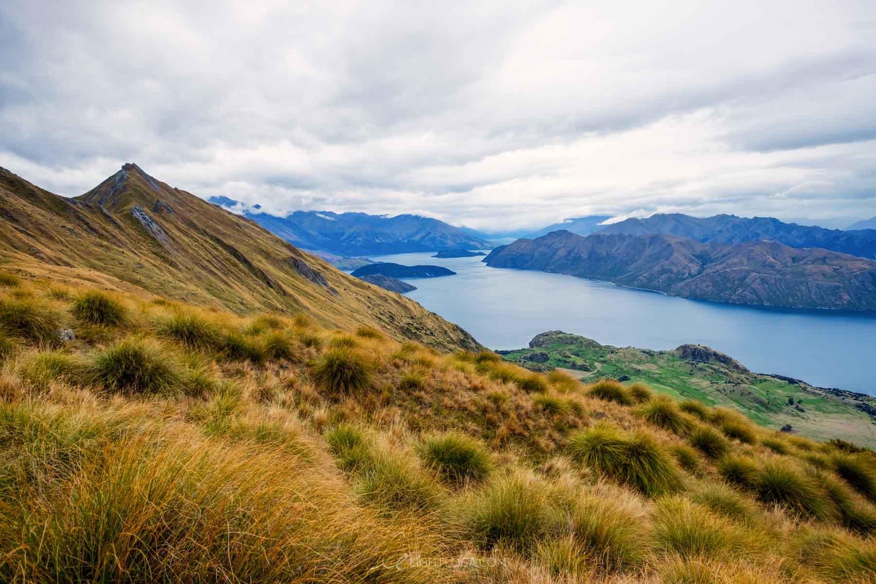 Roys Peak Hike Wanaka New Zealand