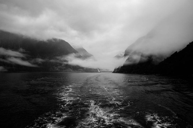 boat ripples at Milford Sound New Zealand