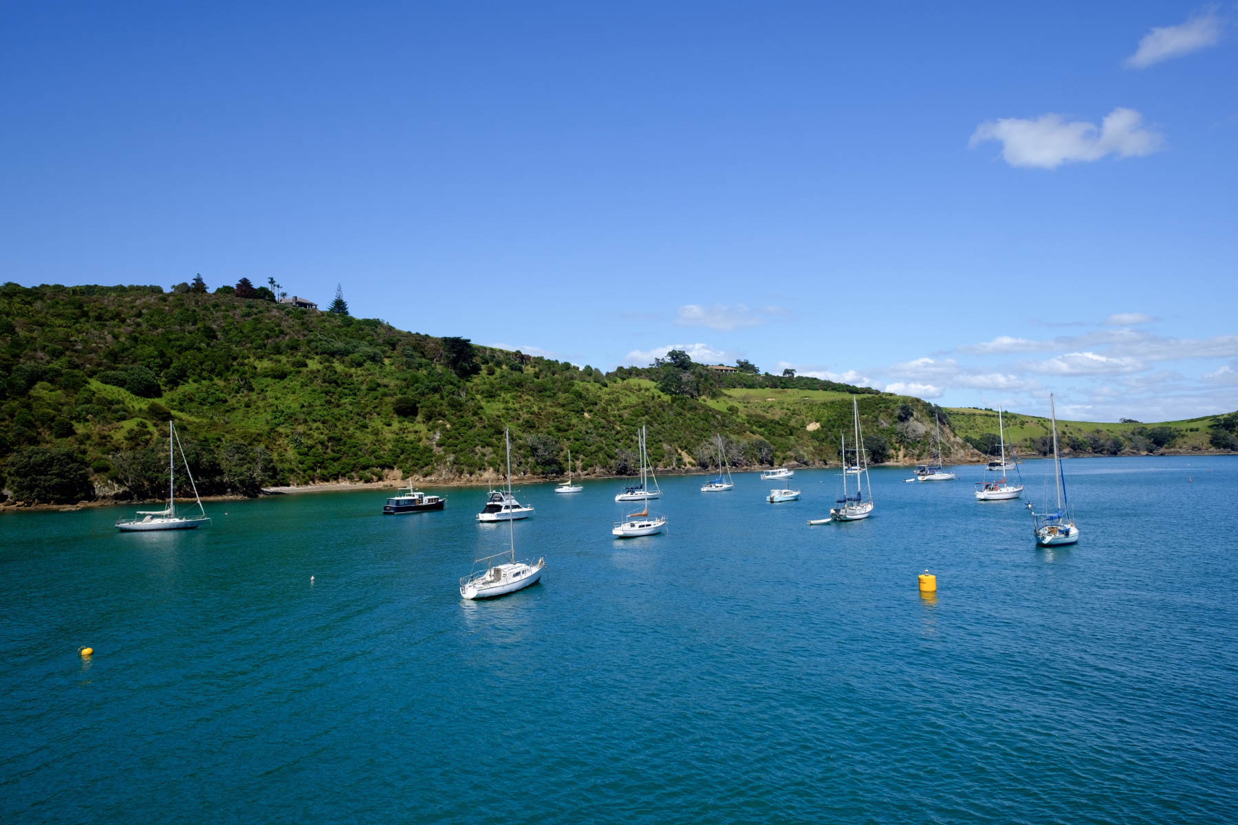 Boats waiheke island new zealand