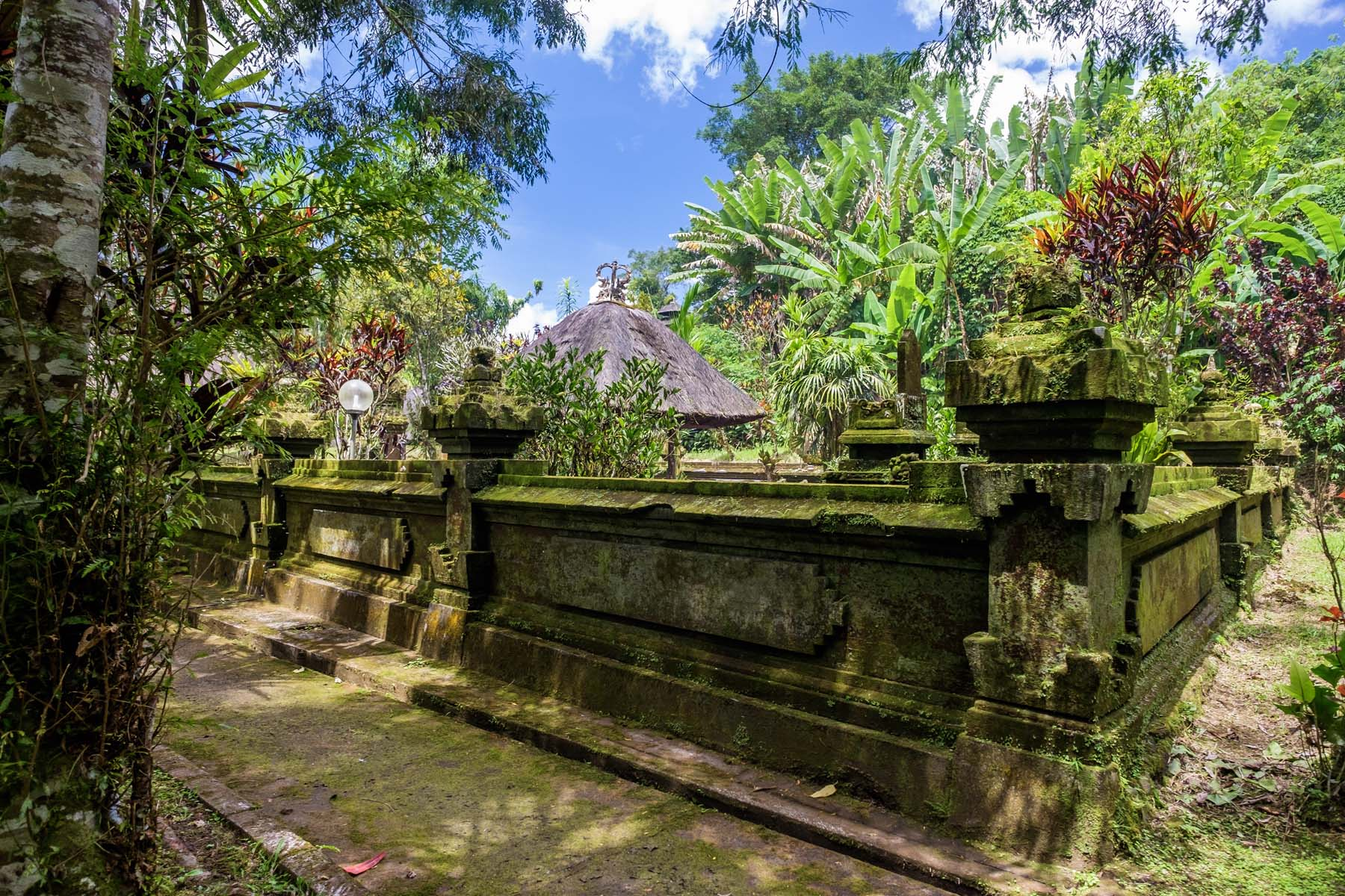 green plants temple Bali
