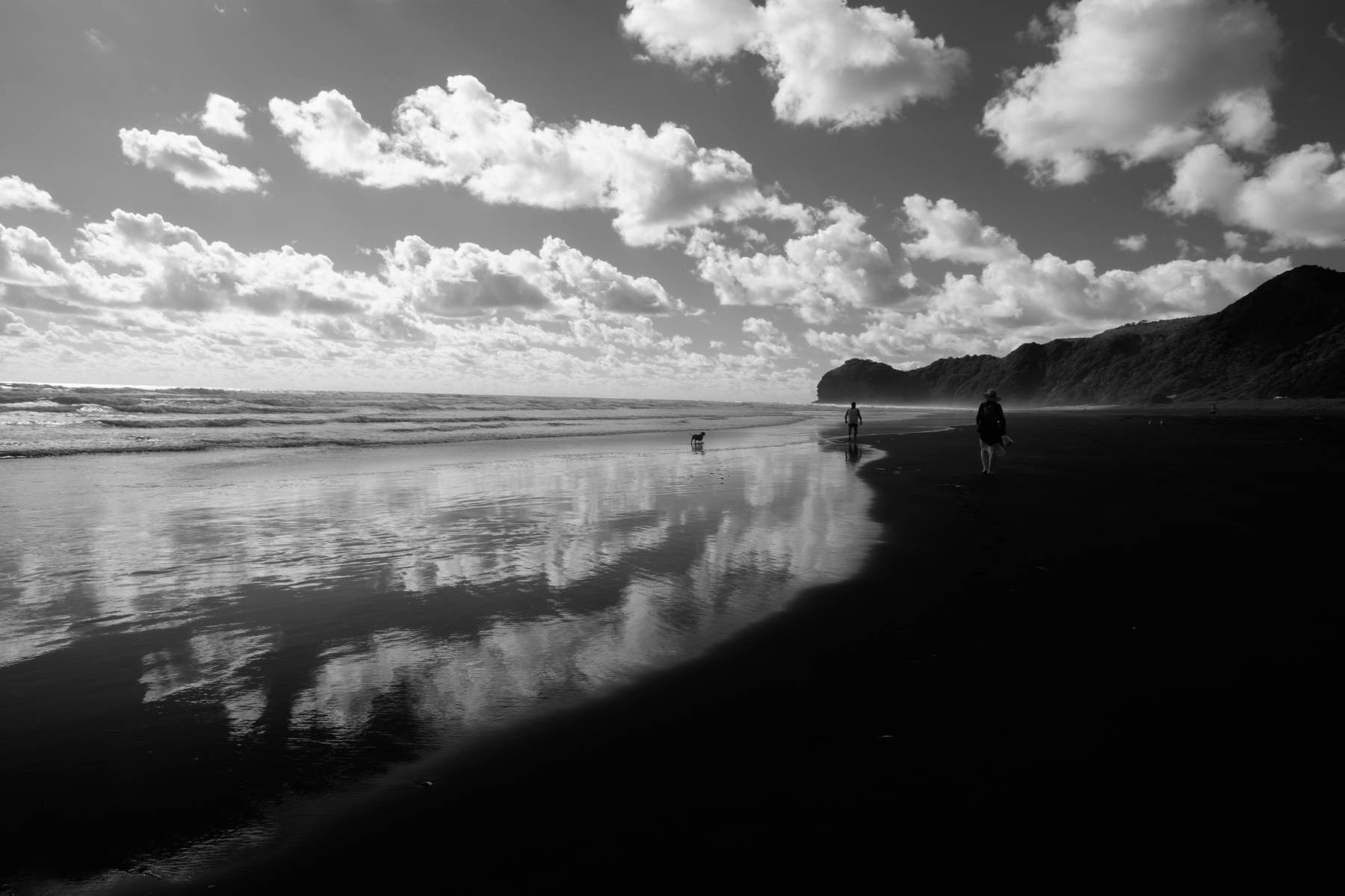 Piha beach black and white new zealand