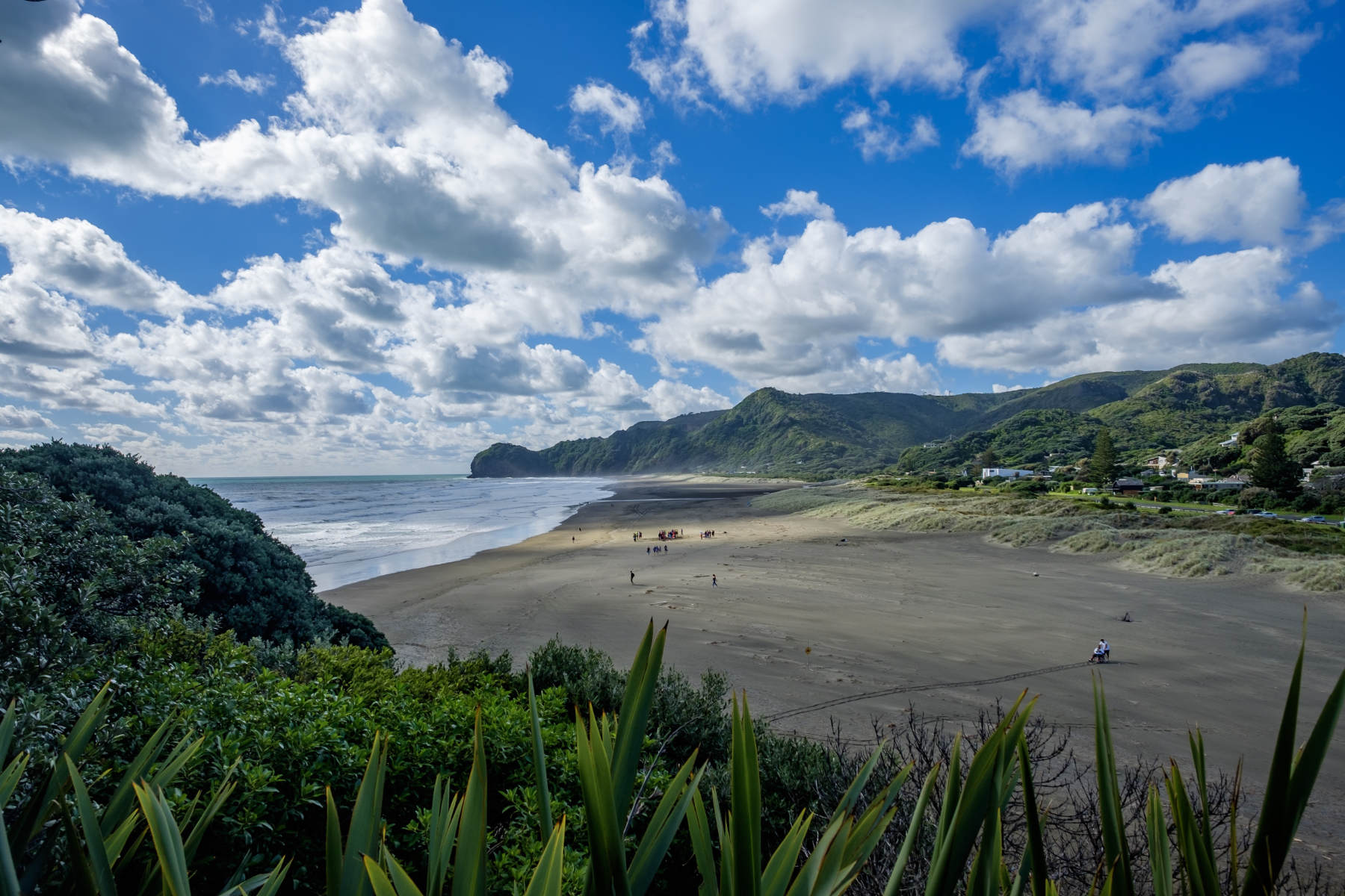 Piha Beach from top view new zealand