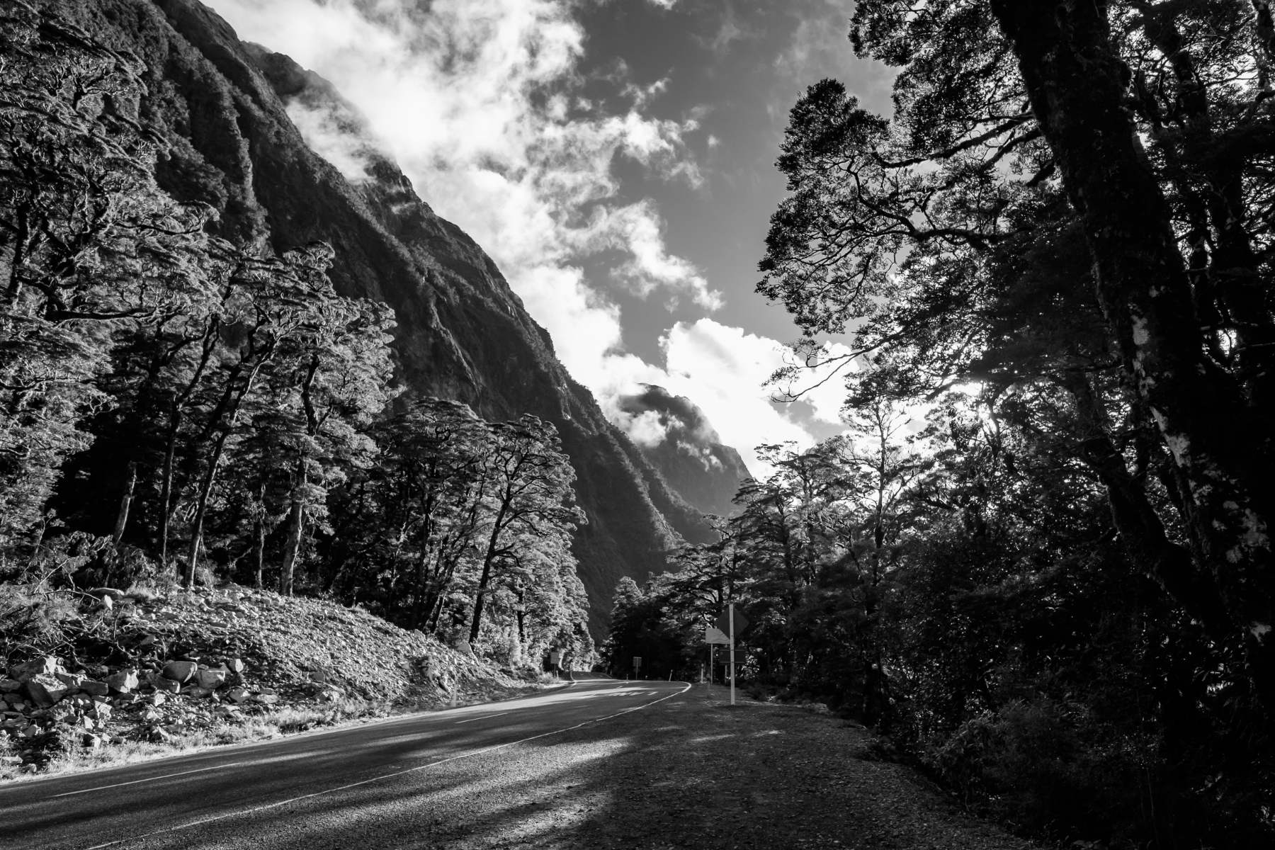 Road to Milford Sound New Zealand