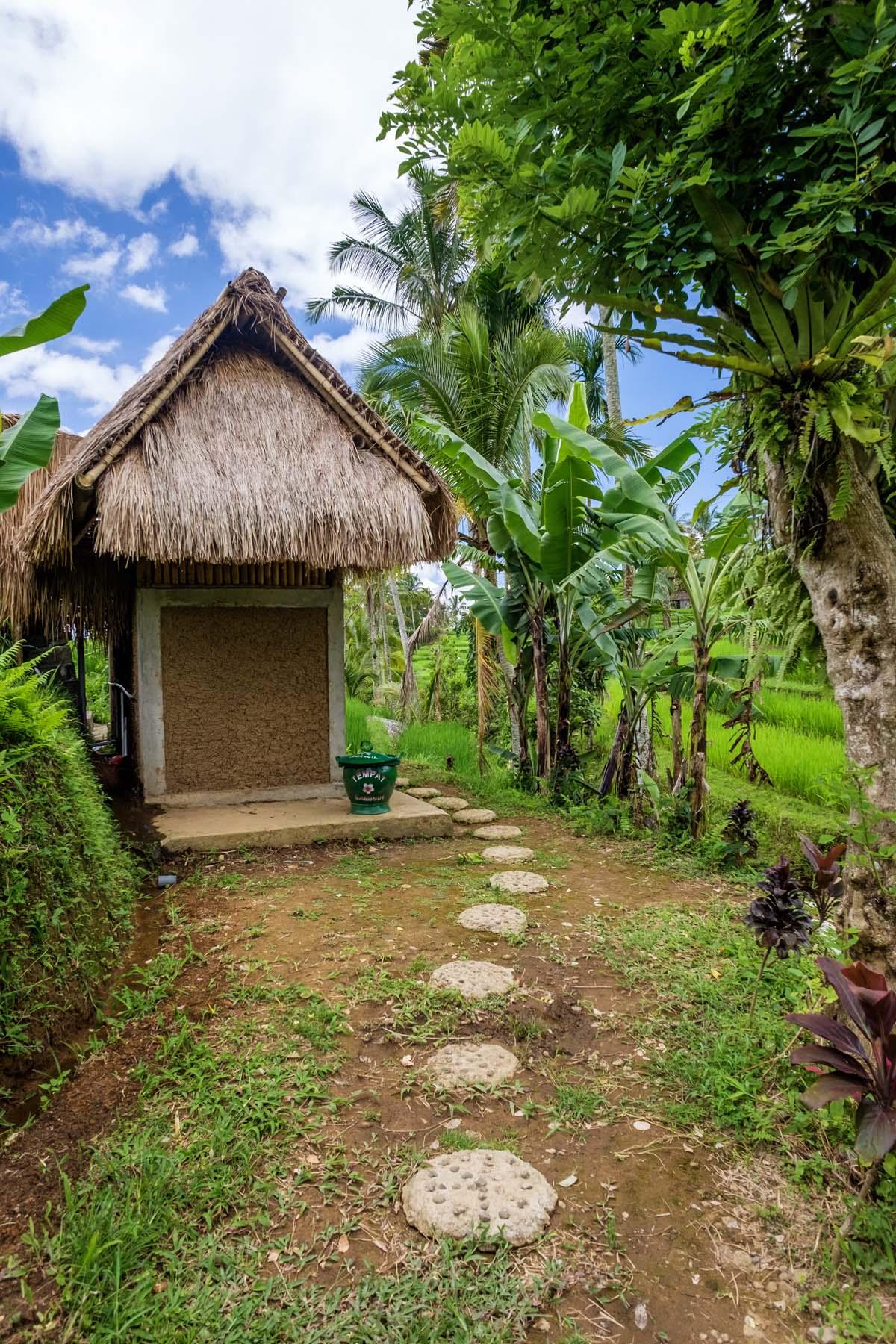 hay house jatiluwih Bali indonesia