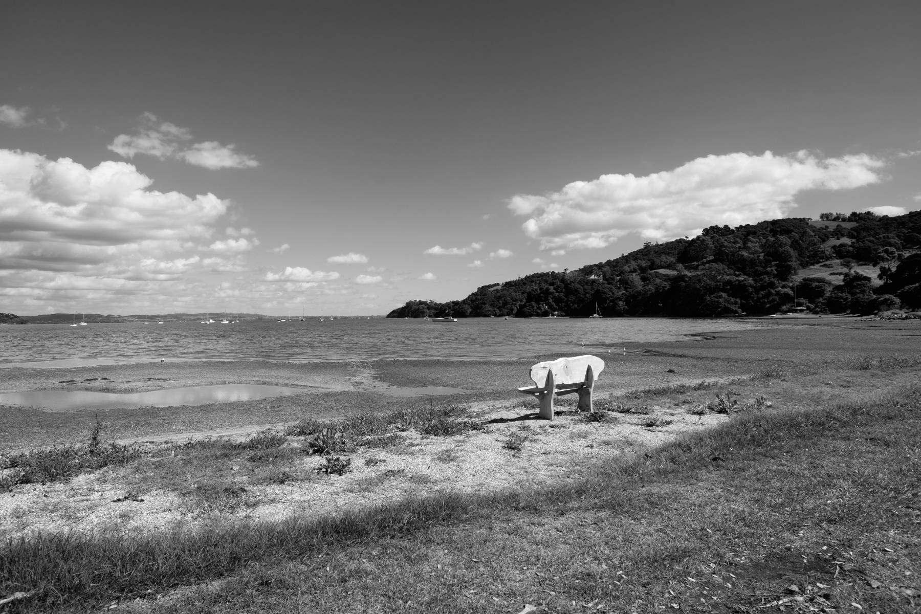 Single chair waiheke island new zealand