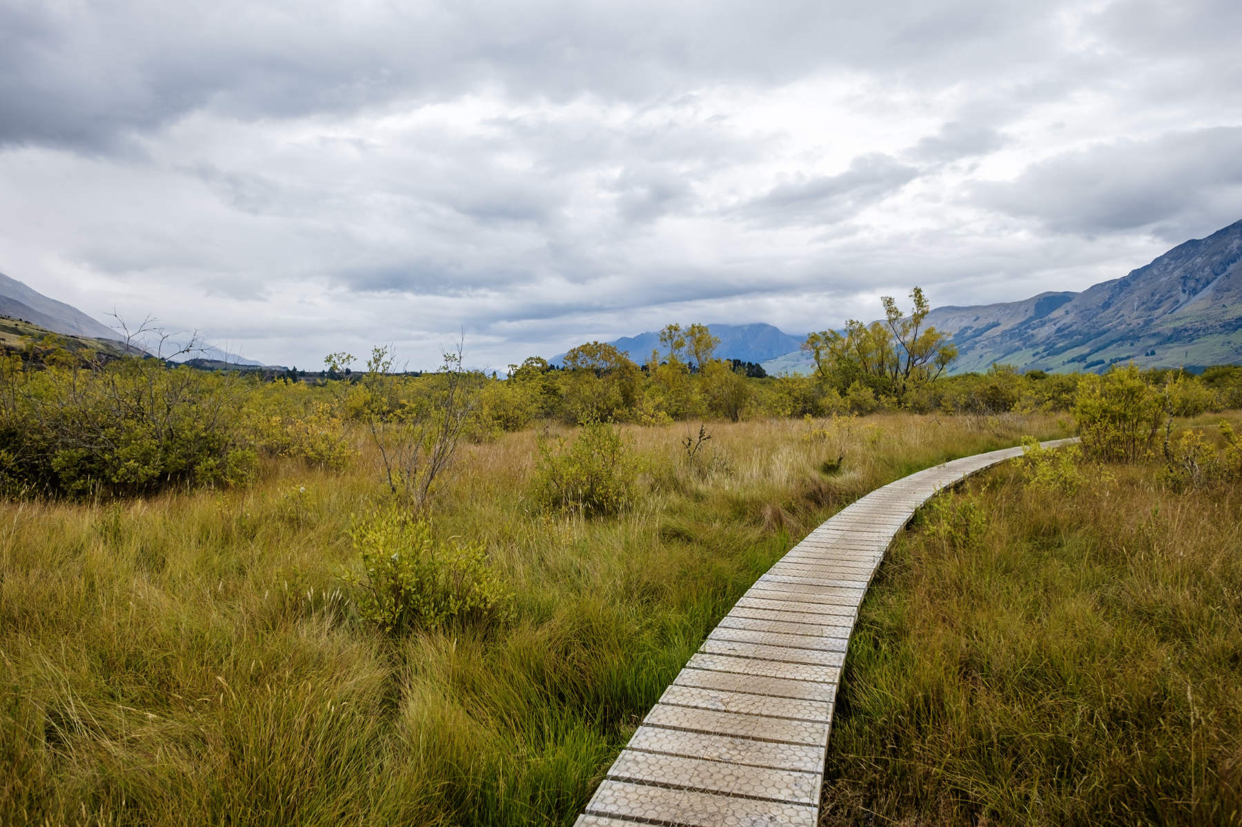 Wooden path glenorchy New Zealand